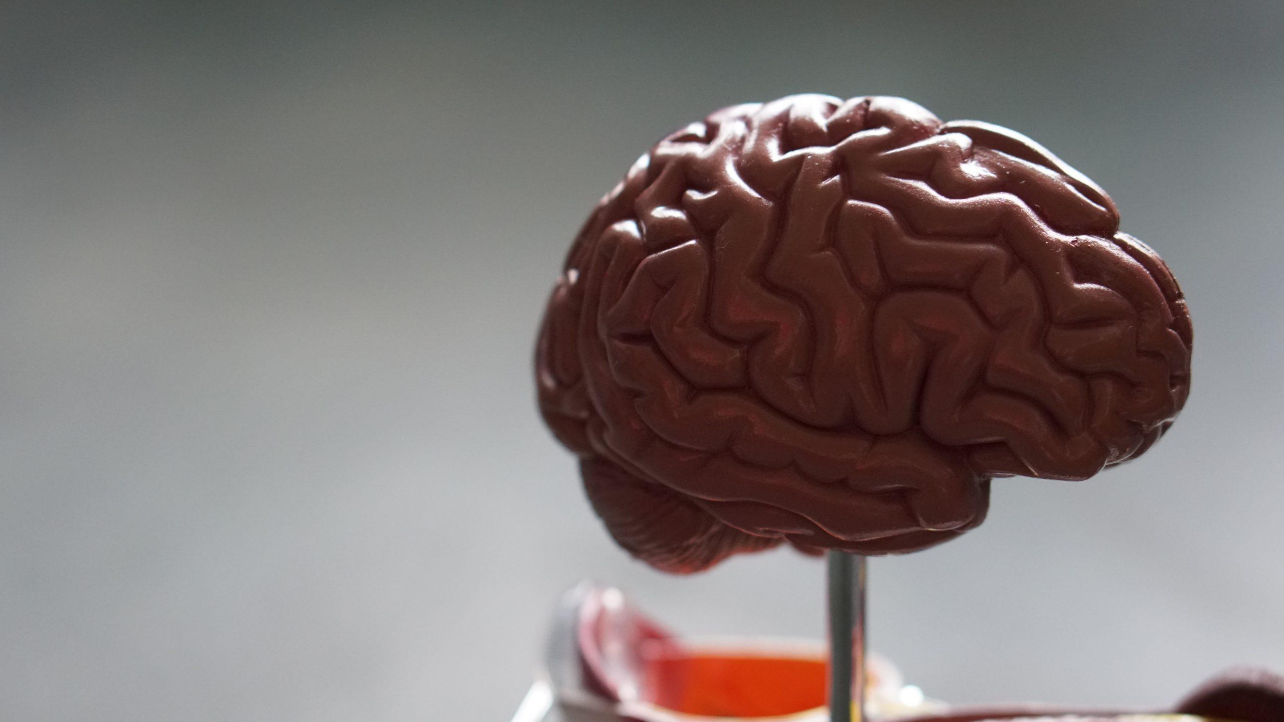 ADHD en hersentrauma: een verrassende wending
