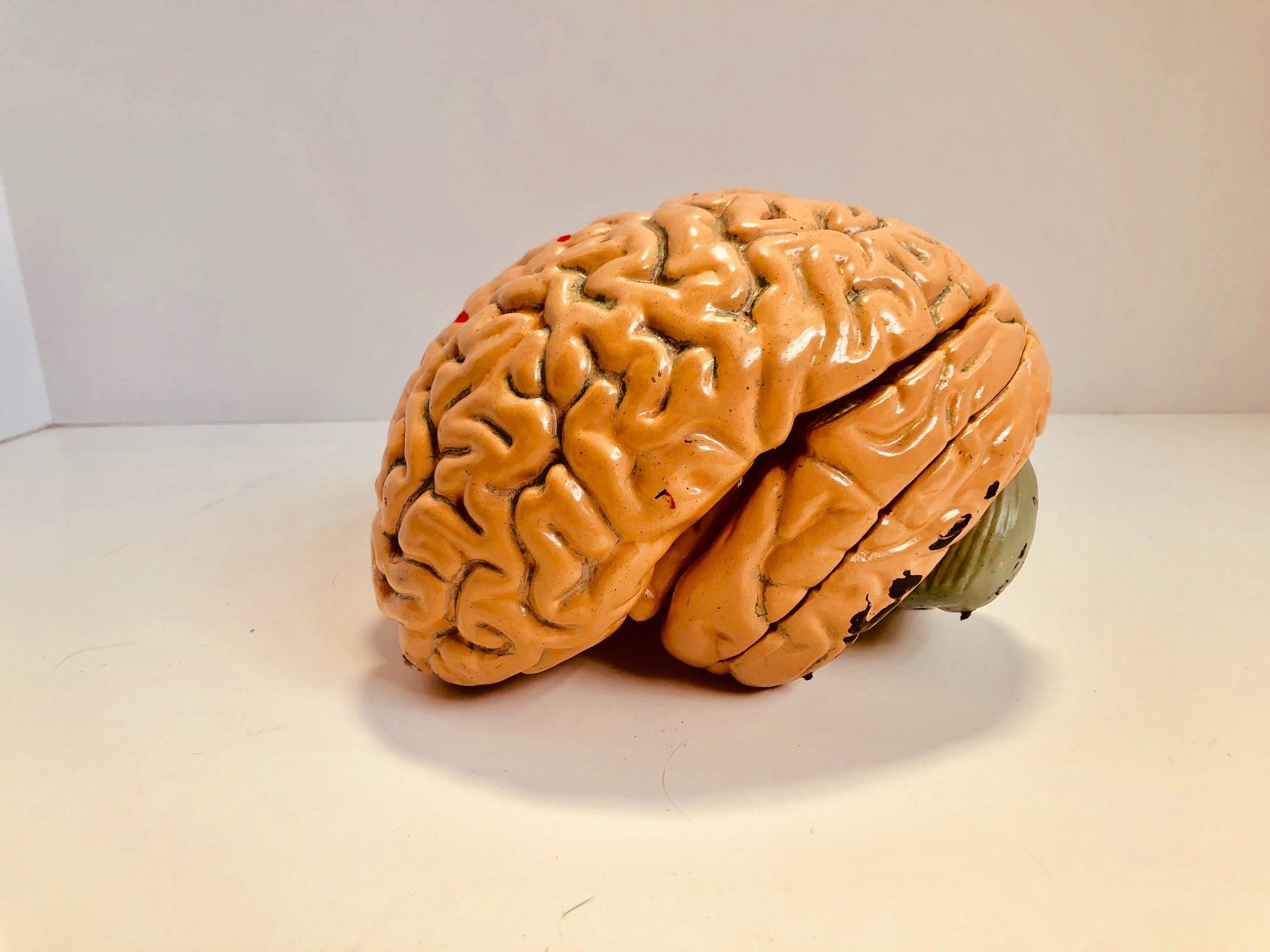 Beperkte beloning in beeld gebracht: de dopaminerge hypothese